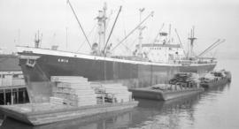 S.S. Ania [at dock]