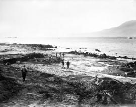 "[Preparing the site for the Maritime Museum and ""St. Roch"" at Hadden Park, Kitsilano Be..."