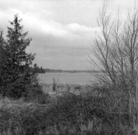 [View of Lake Terrell from the Game Range]