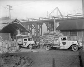 Consolidated Coal trucks [being loaded with] sawdust [at Granville Island]