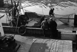 [Man repairing net in fishing boat]