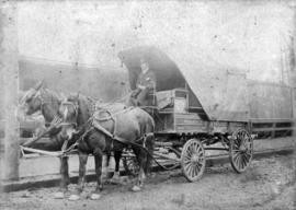 [Wells Fargo Express wagon with two horses]