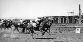 Racing : [horse race on Exhibition Park race track]