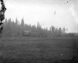 [View of house with large clearing in foreground, and forest in background]