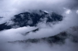 Alpine and Montane : Hurricane Ridge- view from ridge to west