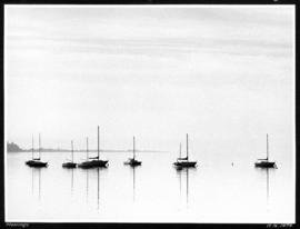 Moorings [sailboats moored offshore]