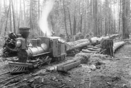 "[""Old Curly"" and train load of logs at the Royal City Planning Mills camp]"