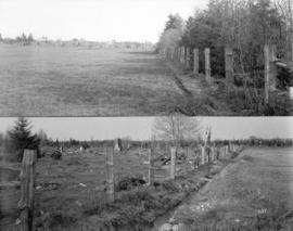 [Two views of Shannon's Farm, Granville Street and 57th Avenue]