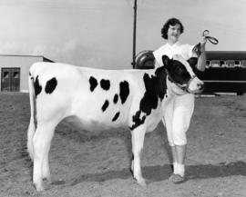 Shirley Savage and grand champion 4-H Holstein calf