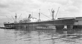 S.S. Alikip [at dock]