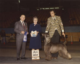 Best in Group [Hound Group: Afghan Hound] award being presented at 1976 P.N.E. All-Breed Dog Show