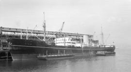 M.S. Kina [at dock, with barges alongside]