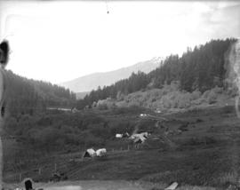 [View of Indian encampment in Botanie Valley]