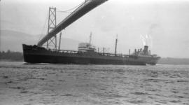 M.S. Ticonderoga [passing under Lions Gate Bridge]