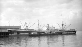 S.S. P. Prekla [at dock, with lumber-filled barges alongside]