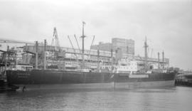 M.S. Isarstein [at dock]