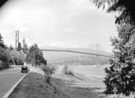 [Side view of] Lions Gate Bridge from Stanley Park