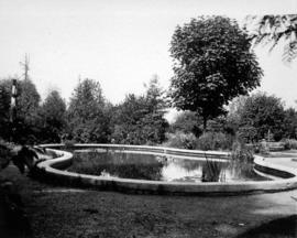 [A man-made pond at U.B.C. Botanical Garden]