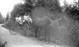 [Family in horse drawn carriage at Stanley Park]