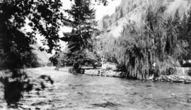 Seton River at the hatchery