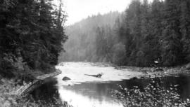 West Coast trip [with Sherwood Lett, Arthur Lord, W.O. Banfield] : The head of Kennedy River