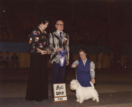 Best in Group [Terrier Group: West Highland Terrier] award being presented at 1976 P.N.E. All-Bre...