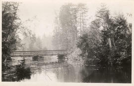 [Lake and rustic bridge]