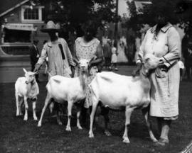 Women with white goats