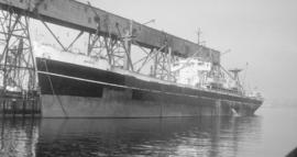 S.S. Basil [at dock]