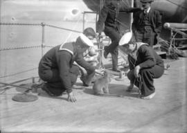 "H.M.S. ""New Zealand"" [sailors with pet monkey]"