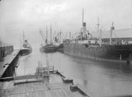 [Steamships at dock]