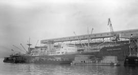 M.S. Baron Inchcape [at dock]