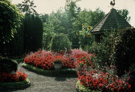 Landscape - Bedding and borders : Children's garden