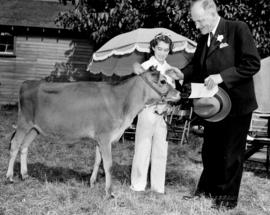 Young girl with yearling calf at Boys' and Girls' Department event