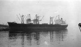M.S. Demetra [at dock]