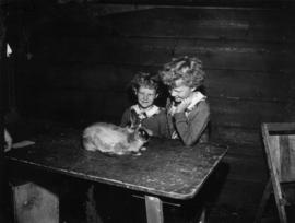 Two girls looking at rabbit on table