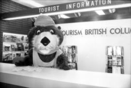 Tillicum behind tourist information booth at the Vancouver Airport