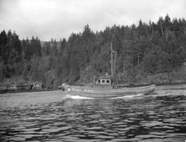 Fish boats at Bedwell Bay