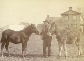 [Unidentified man with horses]
