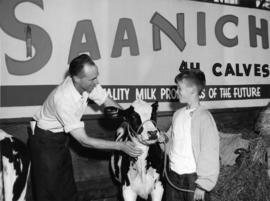Saanich 4-H Calf Club member with calf