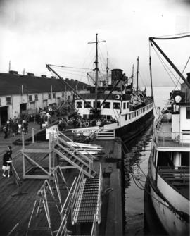 "[S.S. ""Lady Cynthia"" at Union Dock]"