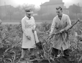 Bordeaux [Company employees tending plants]