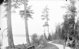 [Man in carriage at Brockton Point, looking south]
