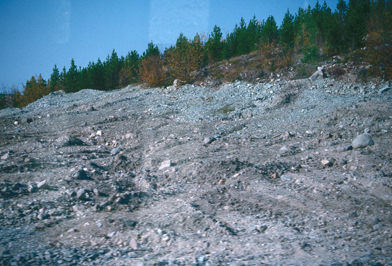 Environment : Copper Mountain. soil building, conservation ...