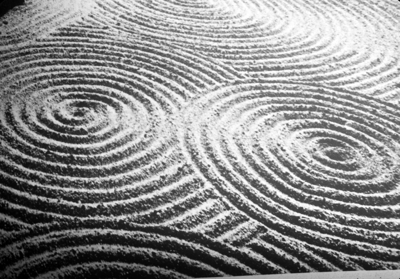 Sand Design Binder Pedigreeadoptame Co