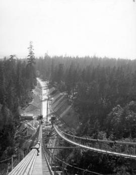 View from near top of south Bridge tower looking towards Stanley Park and driveway.  The cables o...