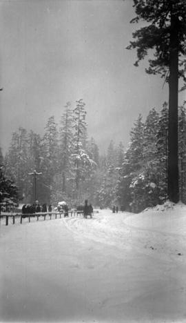 [People walking in snow at Stanley Park]