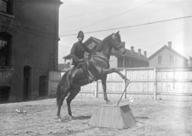 "Policeman and horse ""Shorty"""