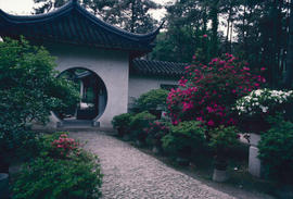 Gardens - China, Japan : modern garden, Souchow, China