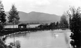 Duck pond with Lumberman's Arch in distance, Stanley Park